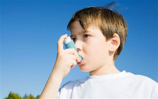 Asthma carbon footprint as big 'as eating meat'