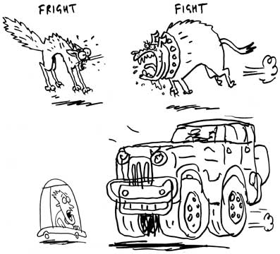 Fright or Fight cartoon